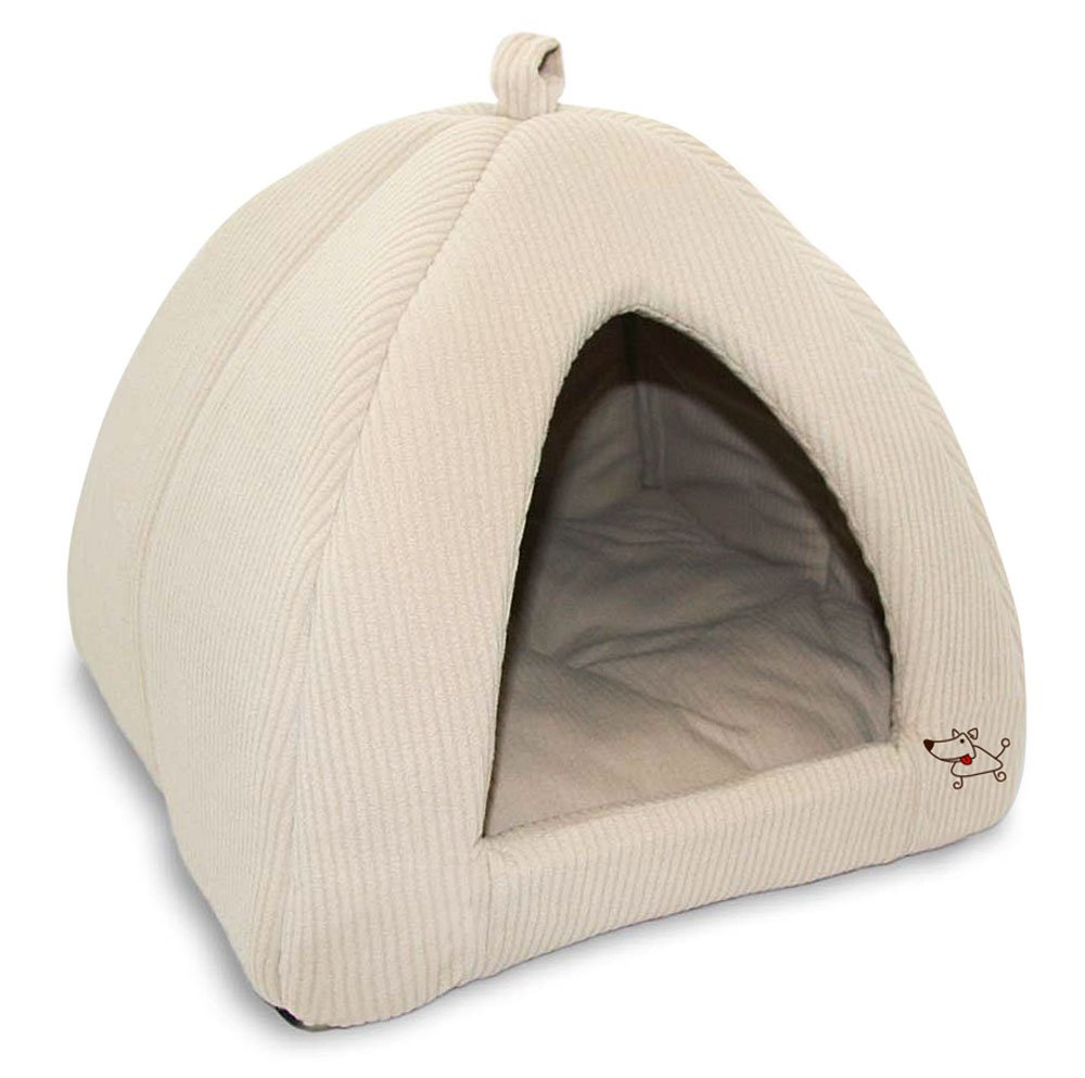 Best Tents For Cats To Play In  sc 1 st  Petu0027s Heaven & Best Tents For Cats To Play In - Petu0027s Heaven